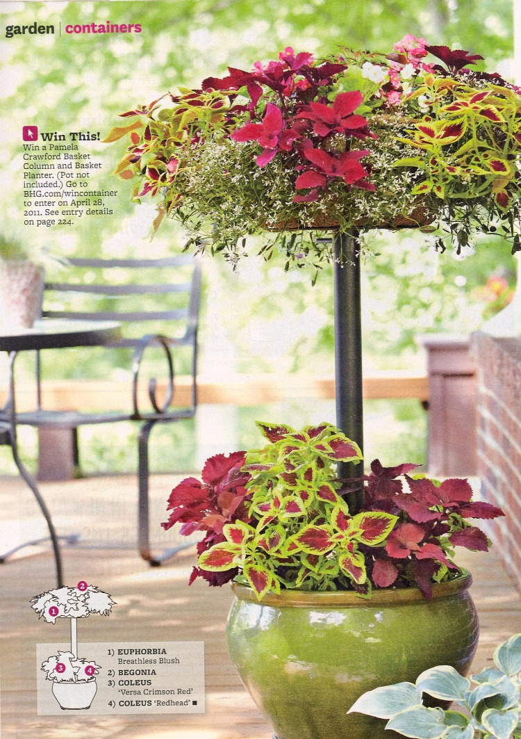 Garden Brights from Better Homes and Garden magazine.