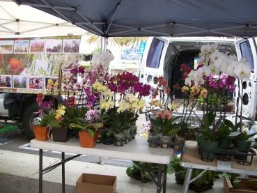 Long Beach Farmers' Market and Craft Fair