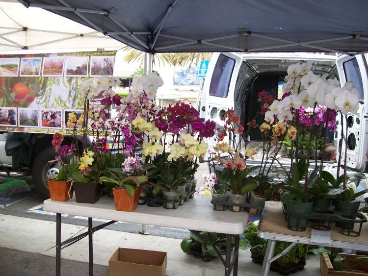 Long Beach Farmers' Market and Craft Fair